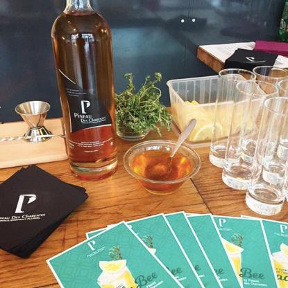 lancement-cocktails-cafe-fauve-privatisation.png